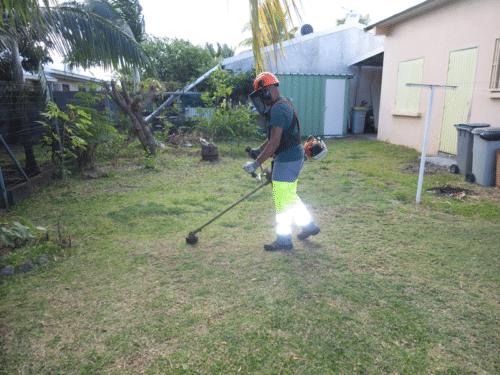 service entretien jardins